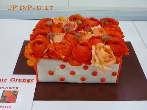 JP-DIP-D-17-2.jpg